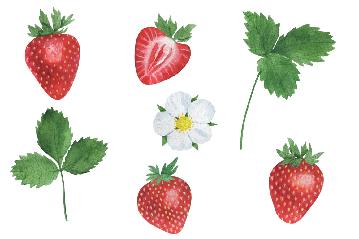 Set Strawberry Watercolor example image 7