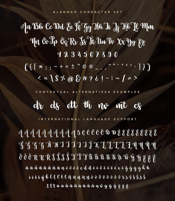 Alannah Script Font example image 5