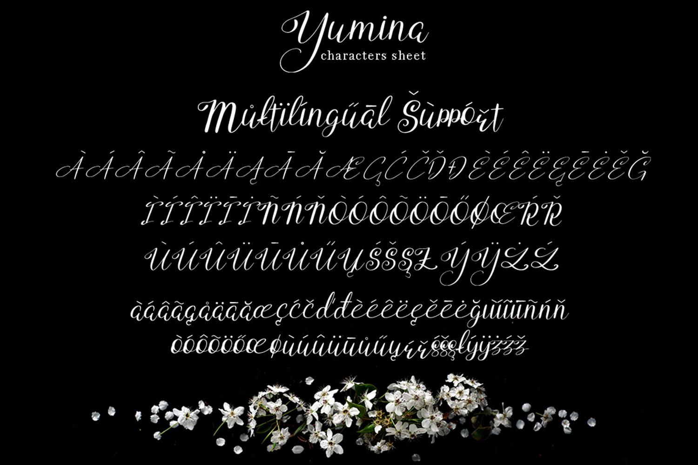 Yumina example image 8