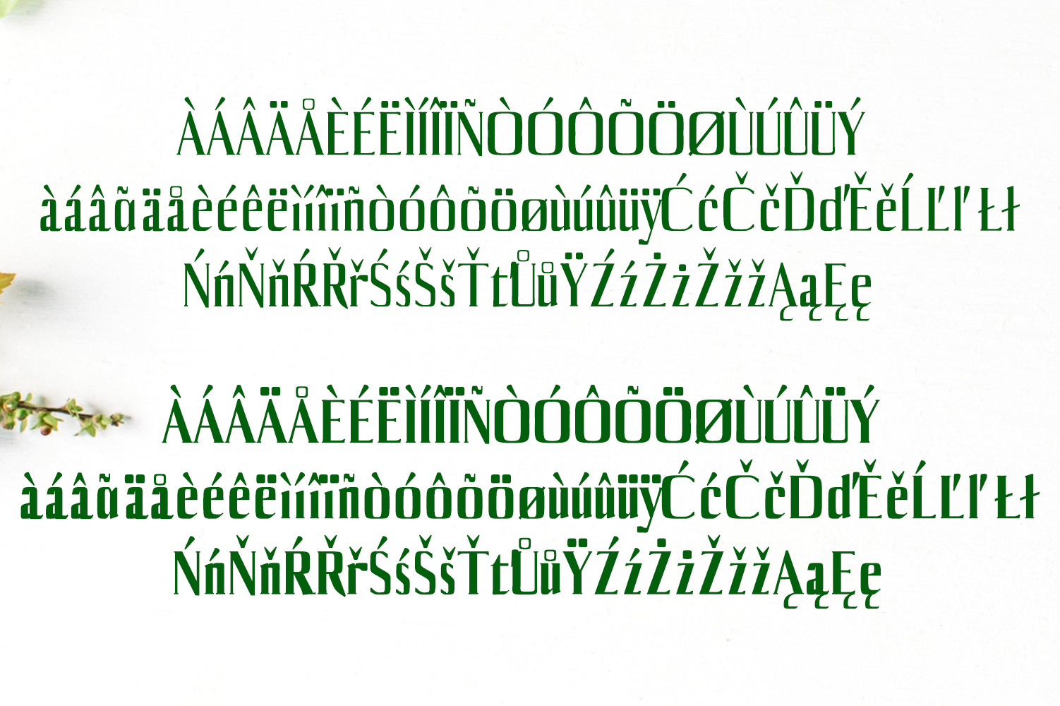 Axell Serif Font Family example image 4