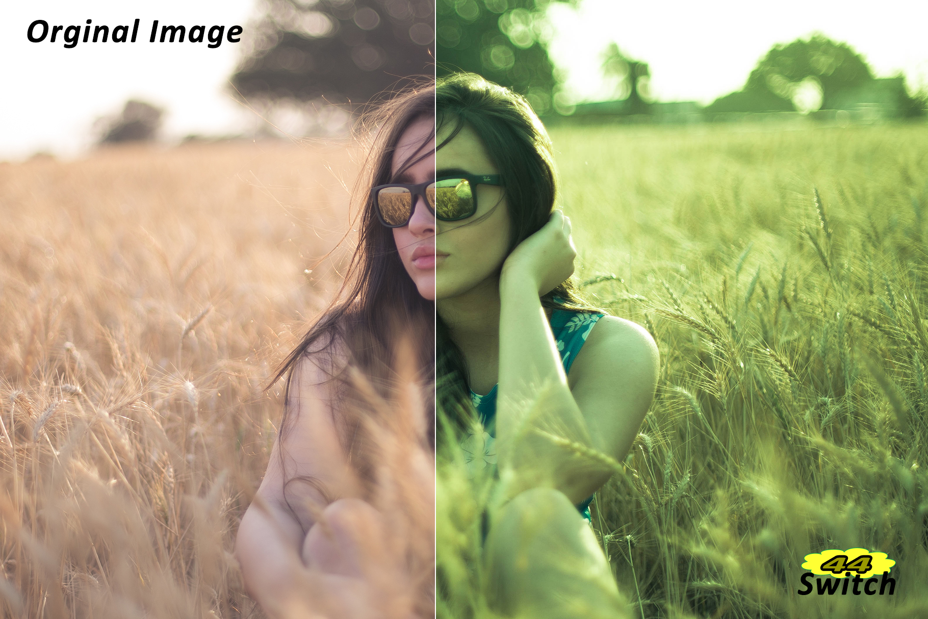 Switch Lightroom Presets example image 4