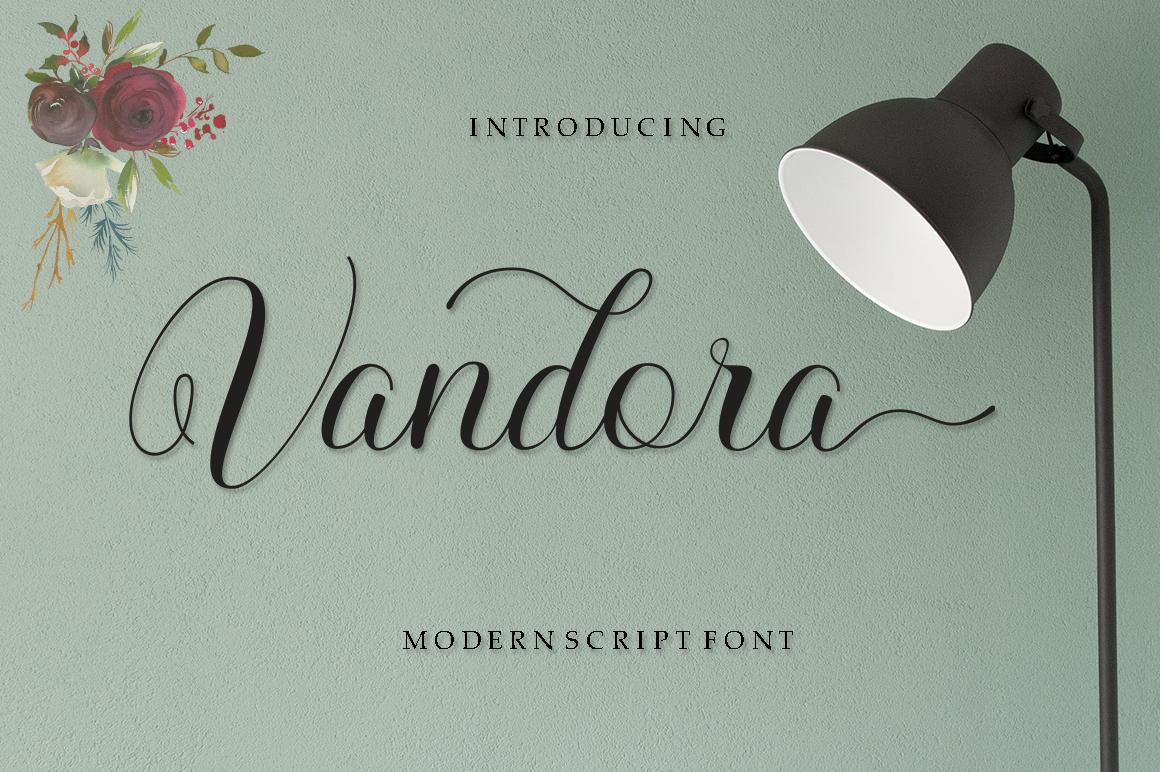 Vandora Font Script example image 1