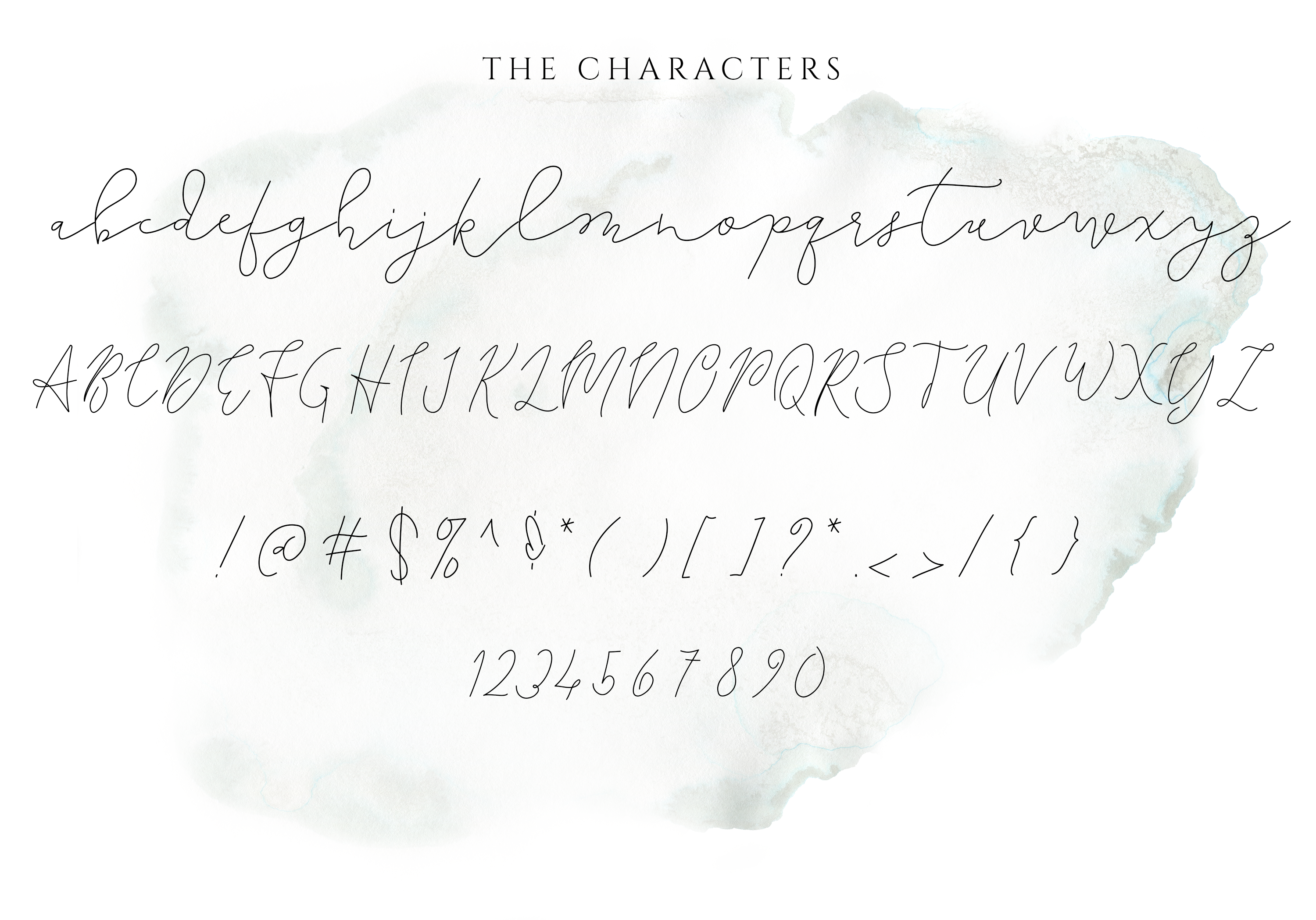 The Lighthouse - Delicate Script Font example image 5