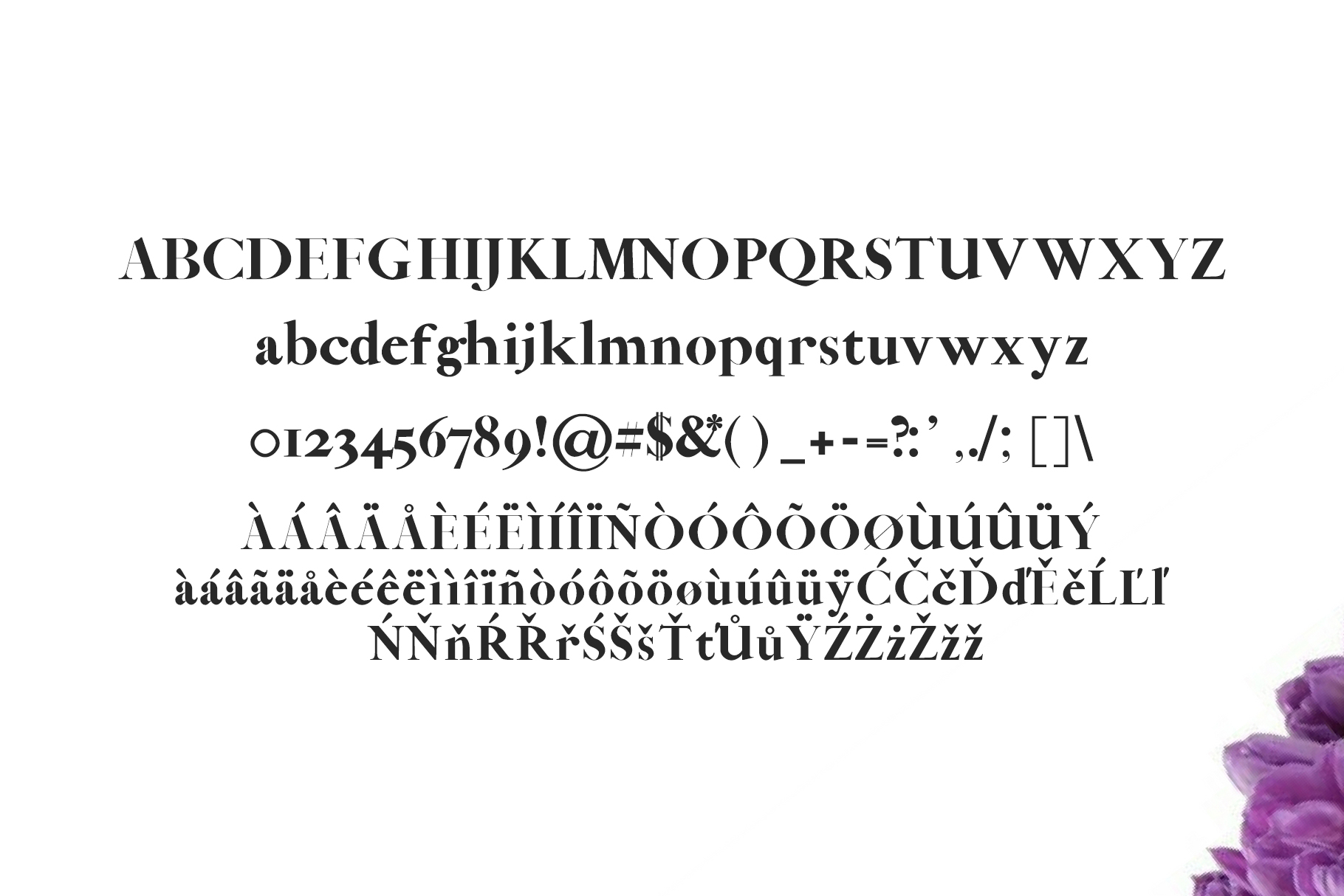 Abed Serif 5 Font Family Pack example image 2