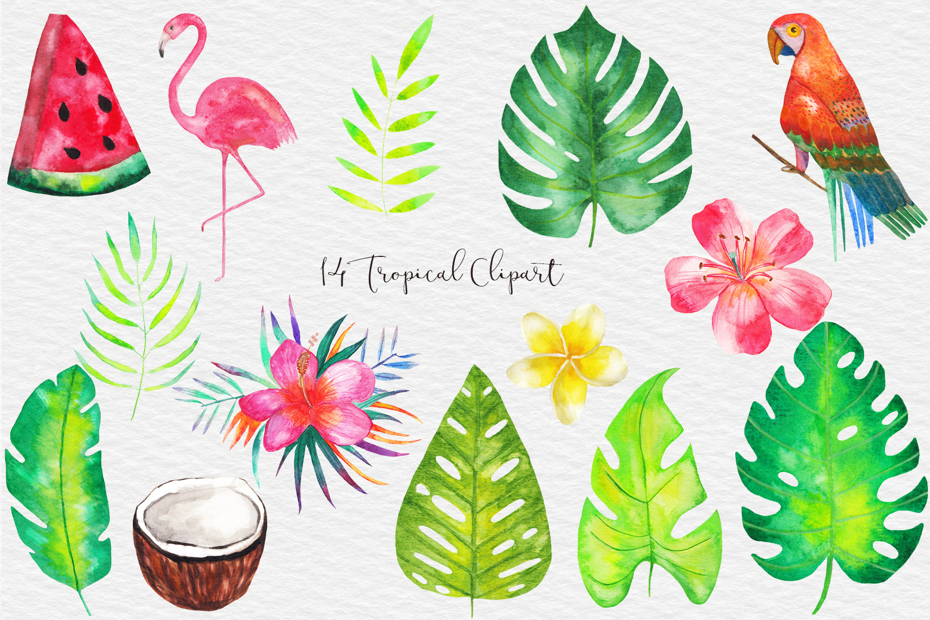 Watercolor Tropical Clipart, Tropical Seamless Patterns example image 2