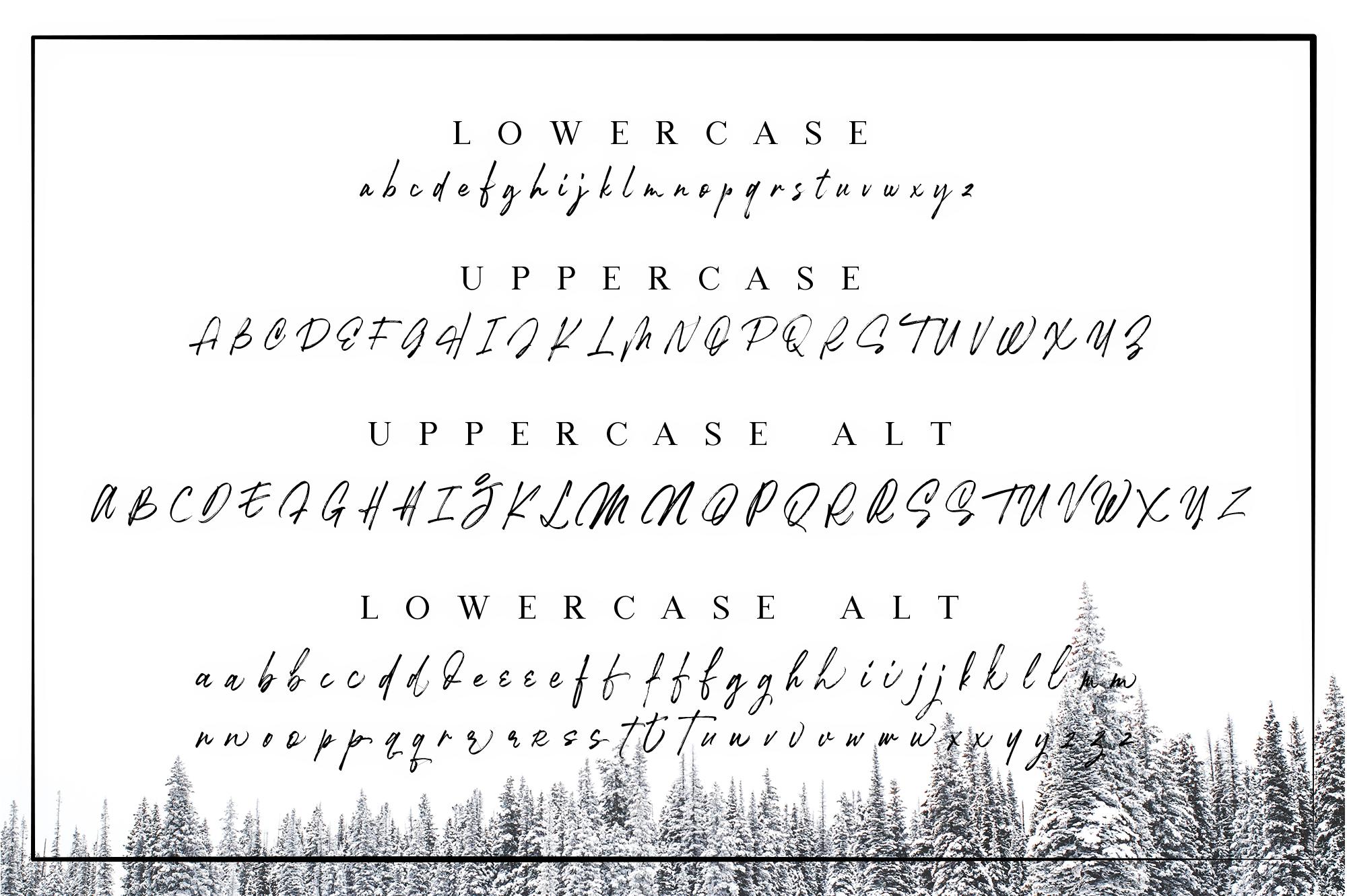 Robusta V.02 example image 6