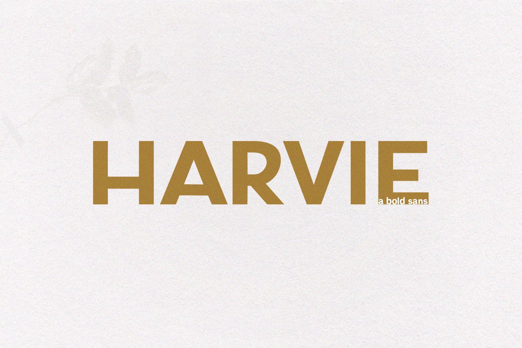 Harvie - A Bold Sans Font example image 1