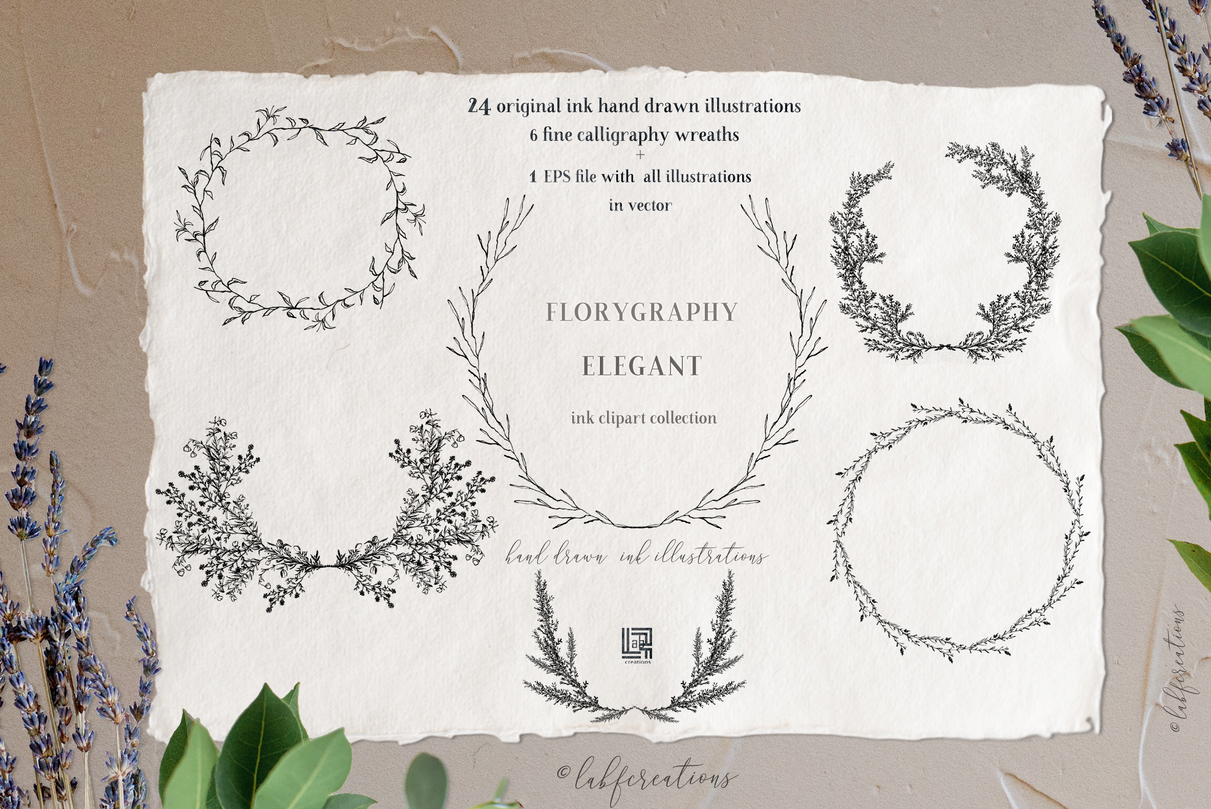 Ink calligraphy illustrations. Floral. Florigraphy Elegant. example image 4
