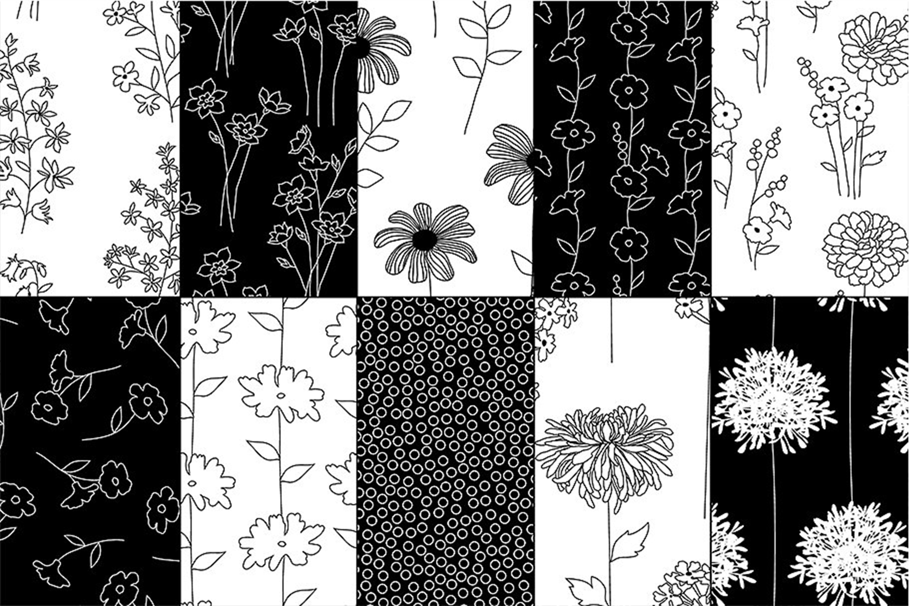 Black & White Botanical Patterns example image 3