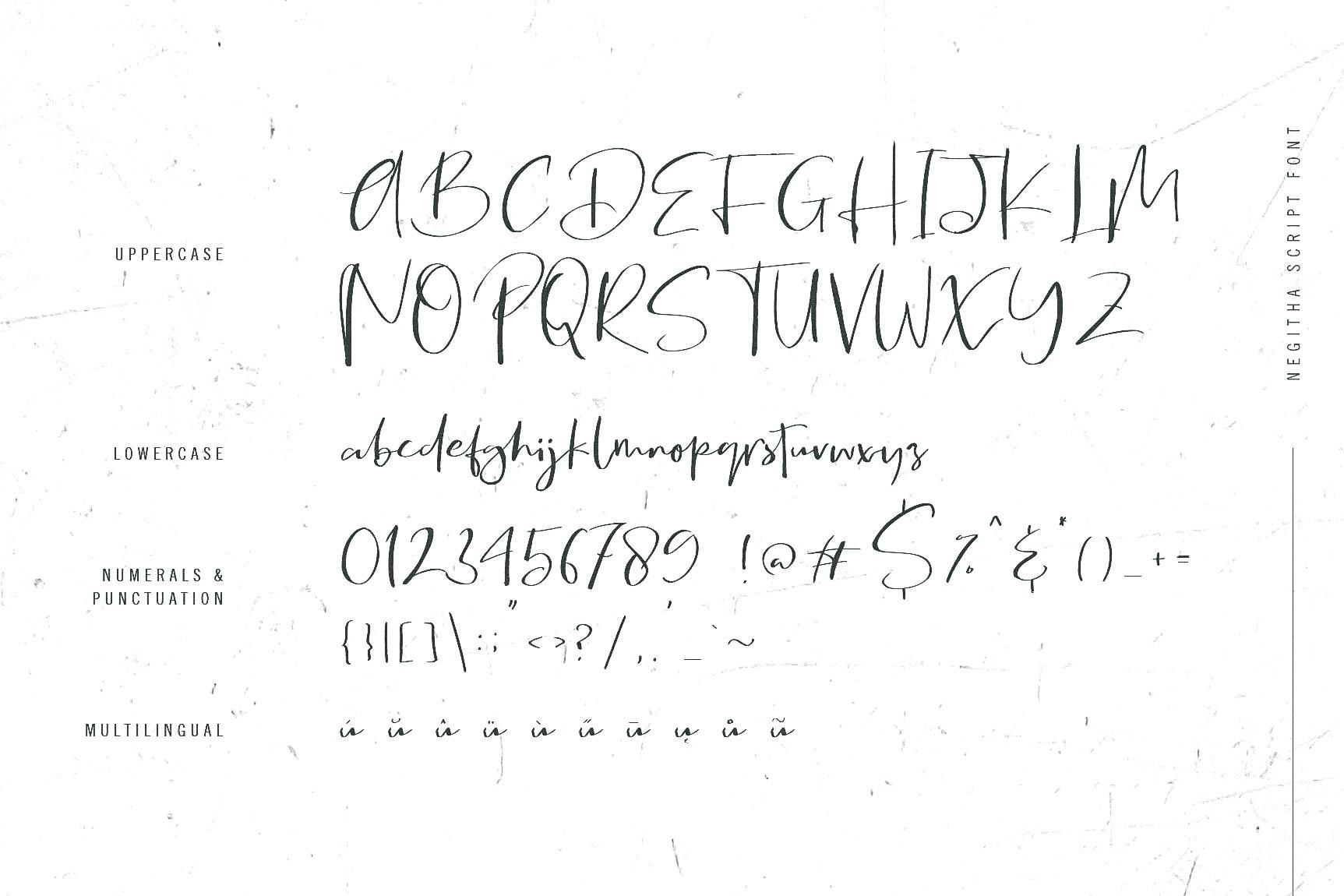 Negitha Script Font example image 10