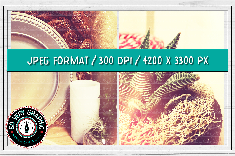 20 Vintage Succulents Holiday Styled Stock   Mock Up Bundle example image 7