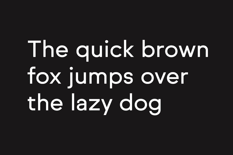 NORMAL - Minimal Typeface & WebFonts example image 8