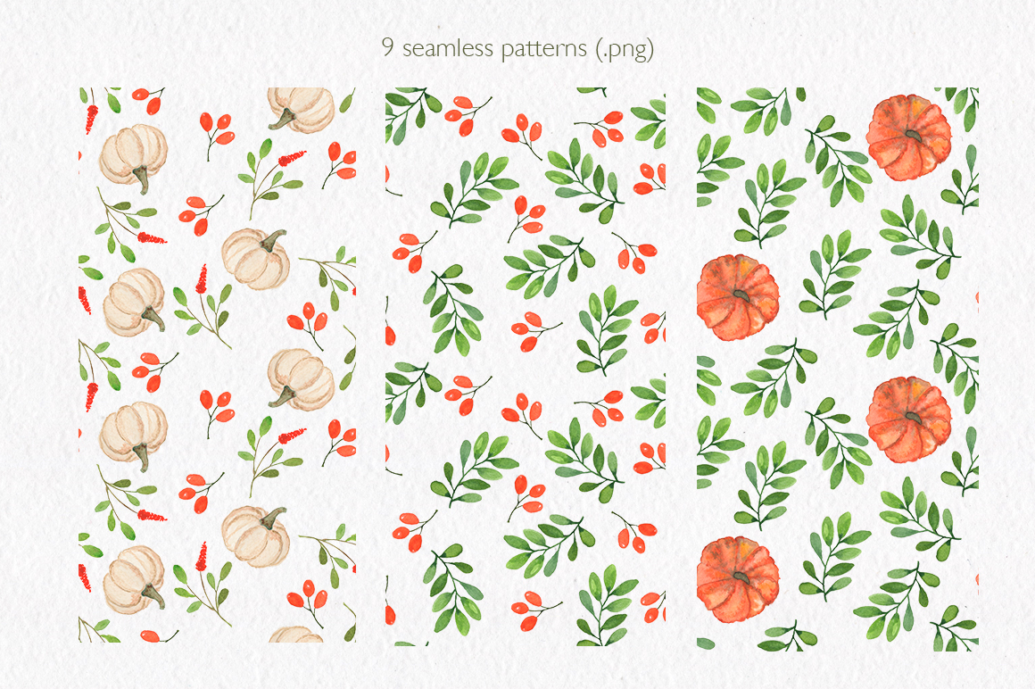 Pumpkin collection. Watercolor clipart. example image 10