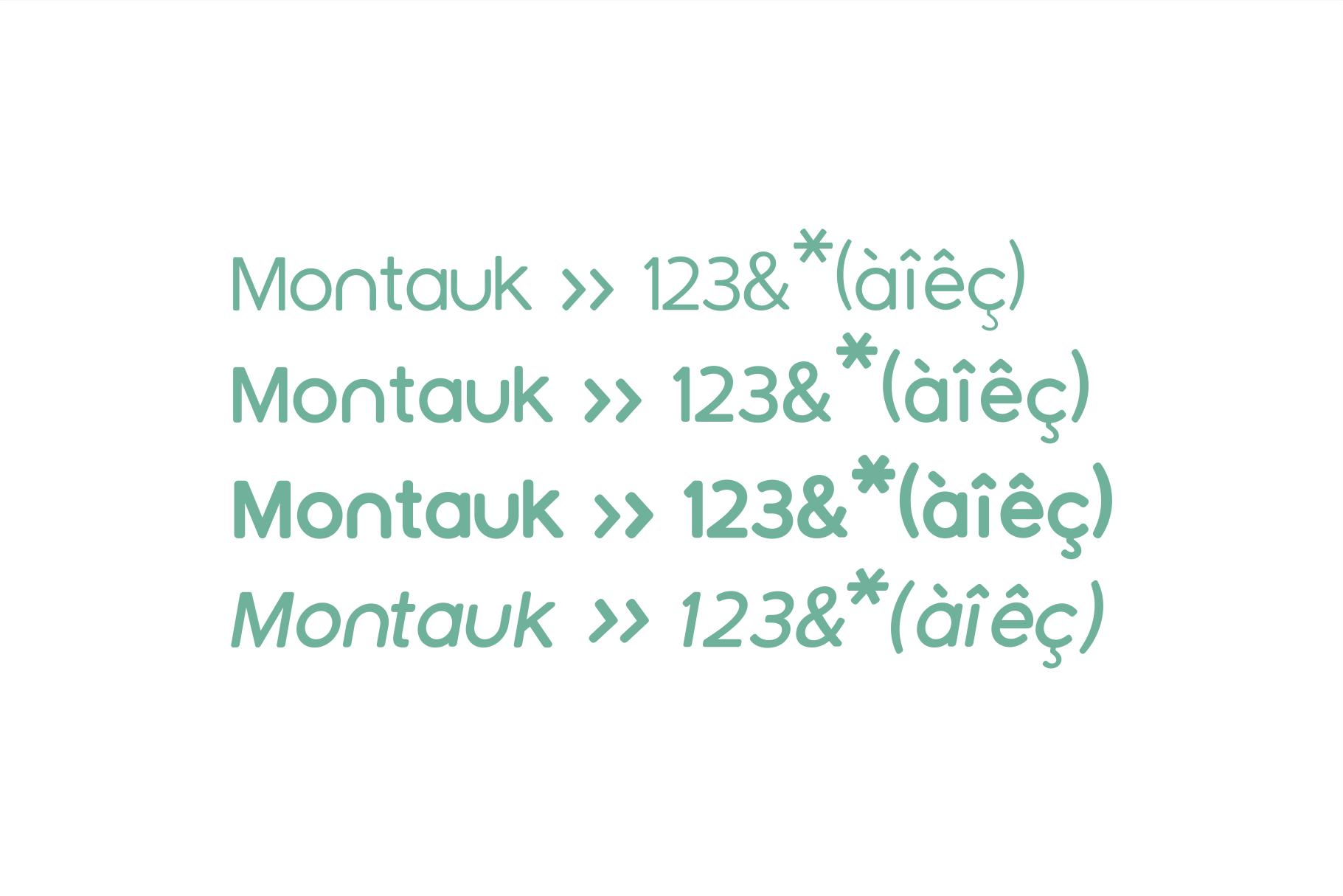 Montauk | Sans Serif Font Family example image 3