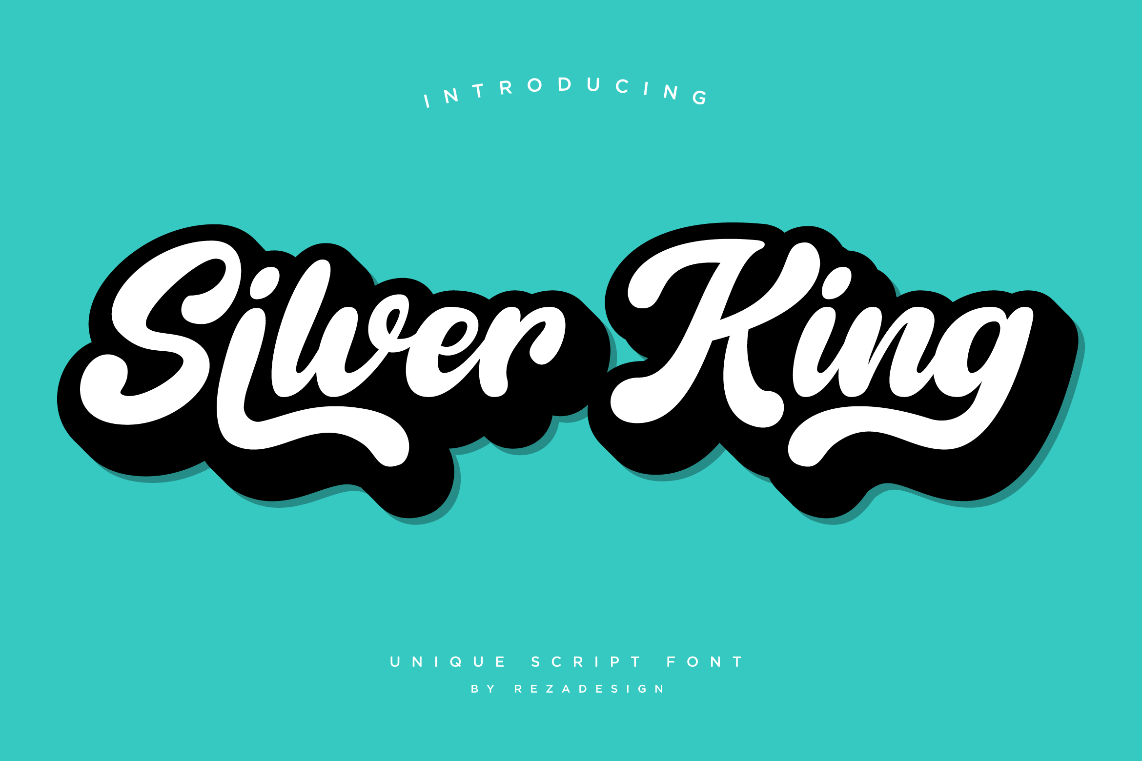 Silver King - Script Font example image 2