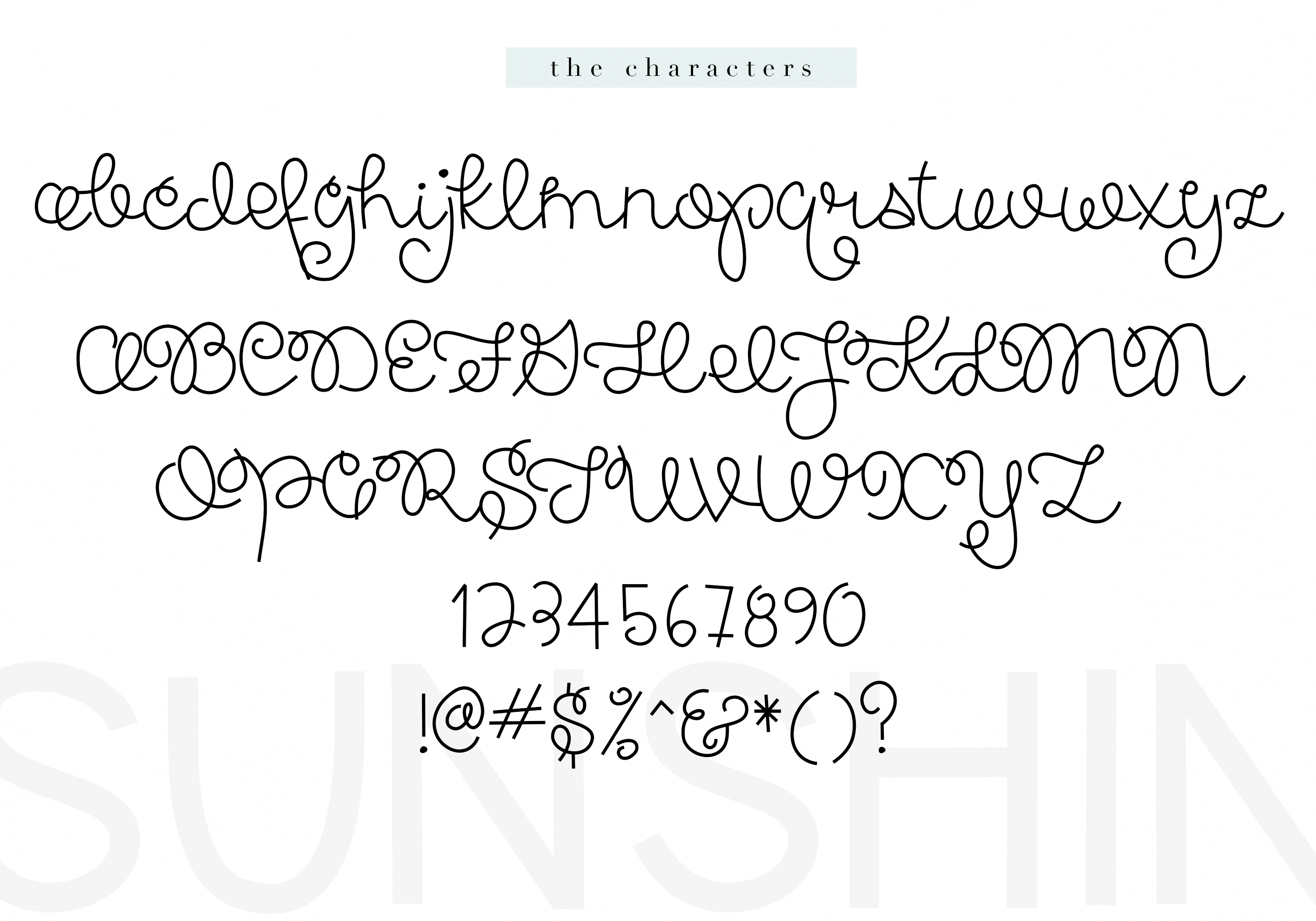 Spring Sunshine - A Serif & Script Font Duo example image 11
