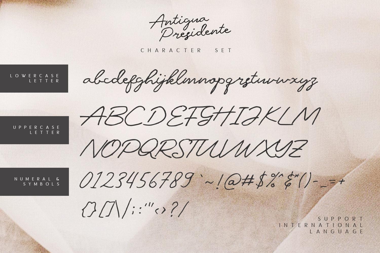 Antigua Presidente example image 6