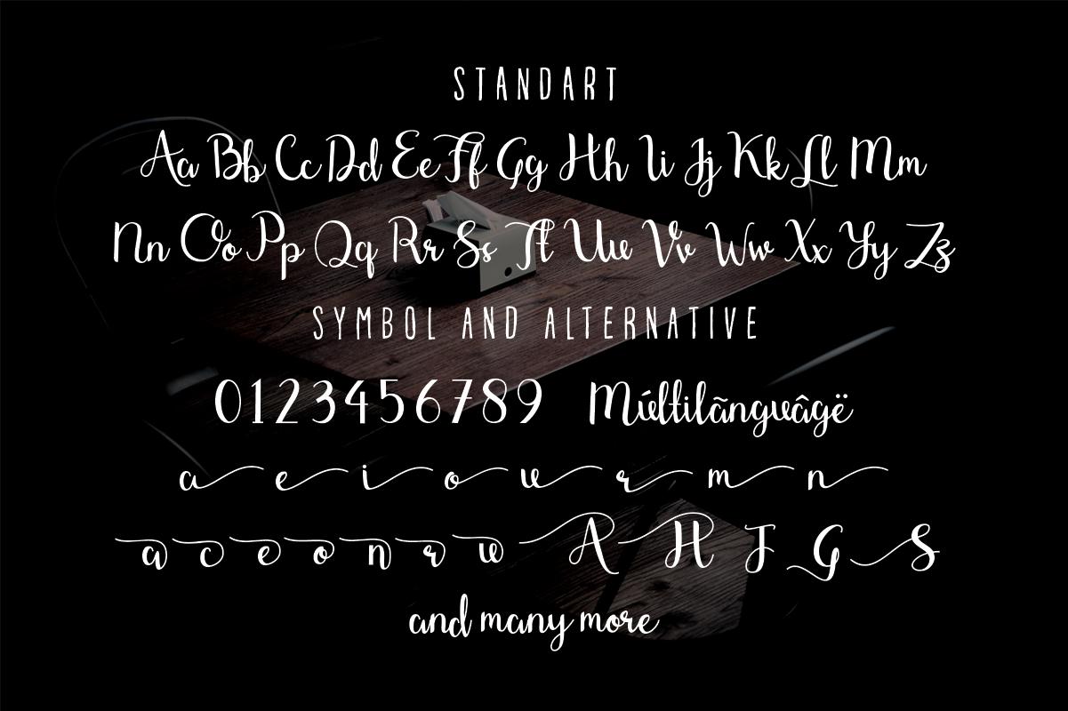 Shefilla Script Font example image 6