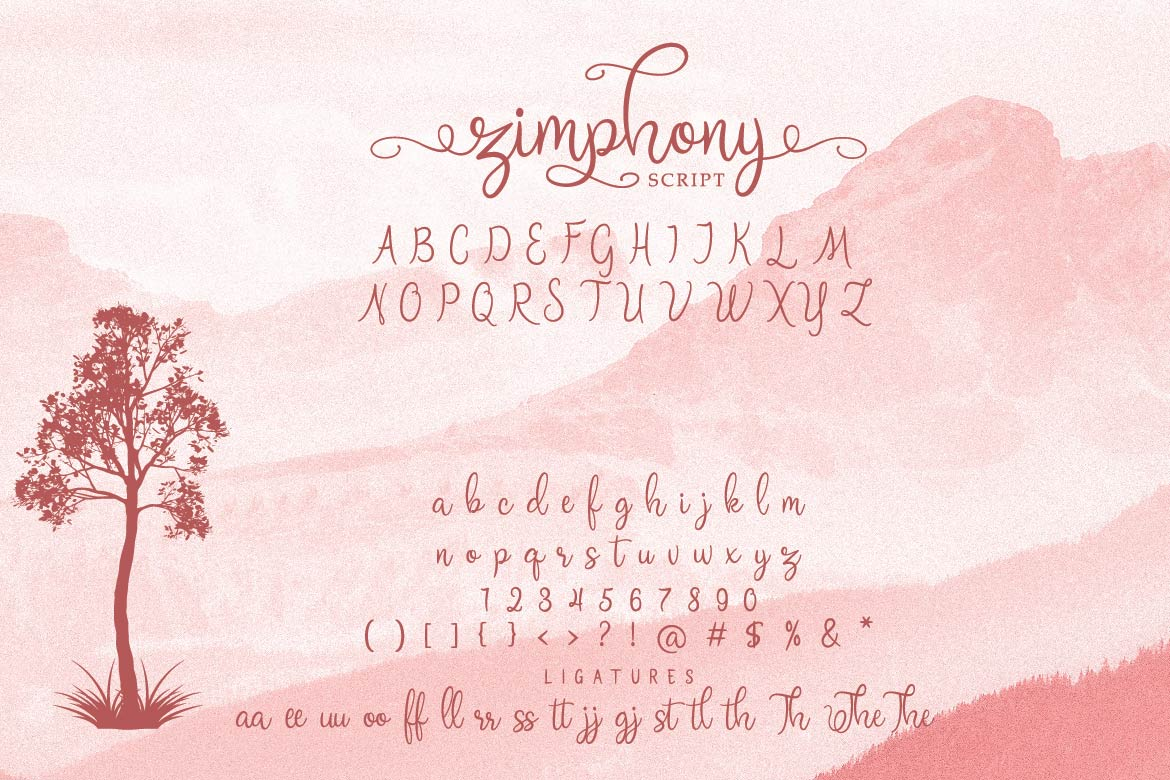 Zimphony Font Duo example image 3