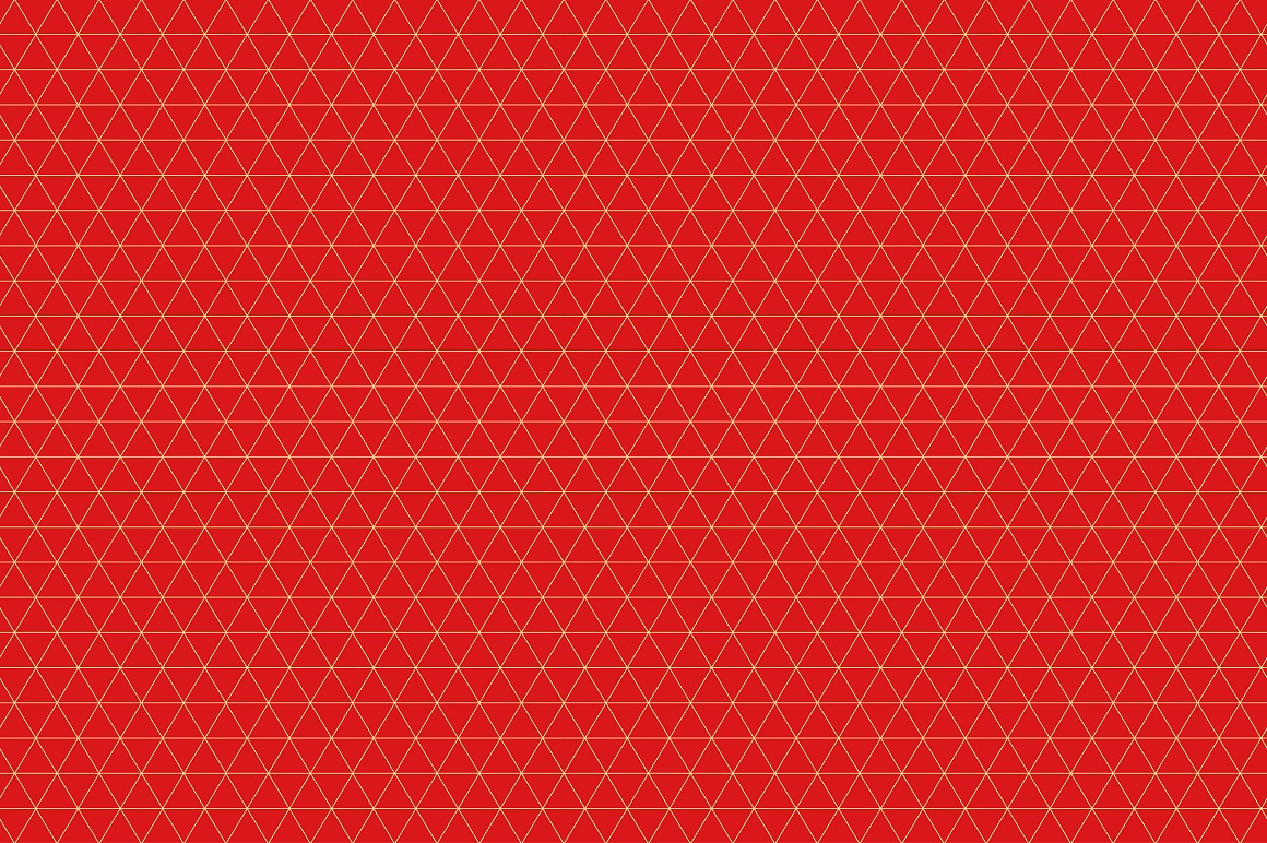 Rich Ornamental Patterns. Seamless. example image 11