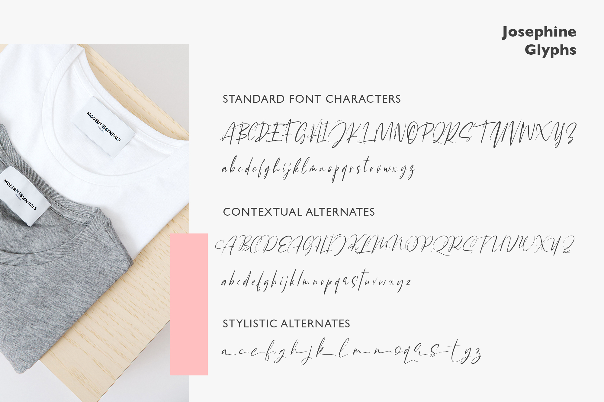 Josephine Fashionable Script Font example image 12