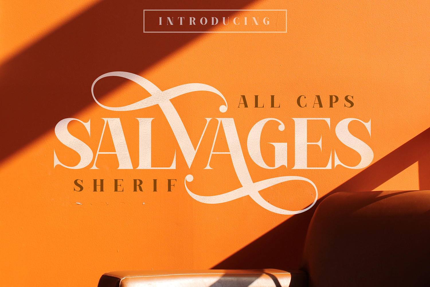 SALVAGES BOLD | SERIF FONT example image 1
