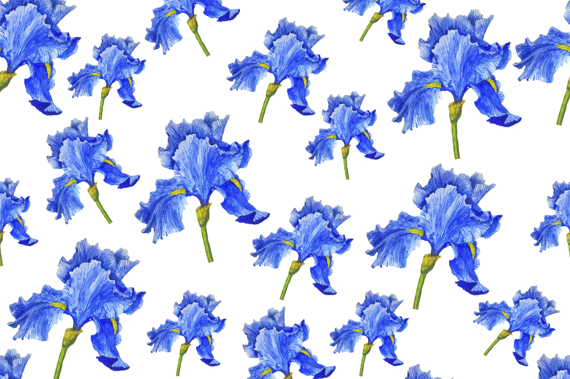 Watercolor flowers irises example image 2