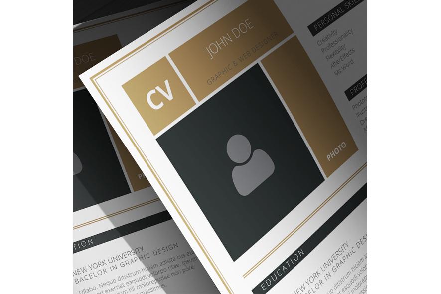 CV A4 Template example image 3