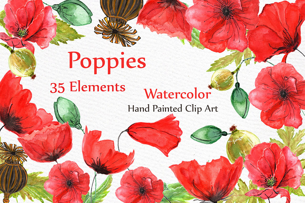 Watercolor flowers- Poppies clipart example image 1