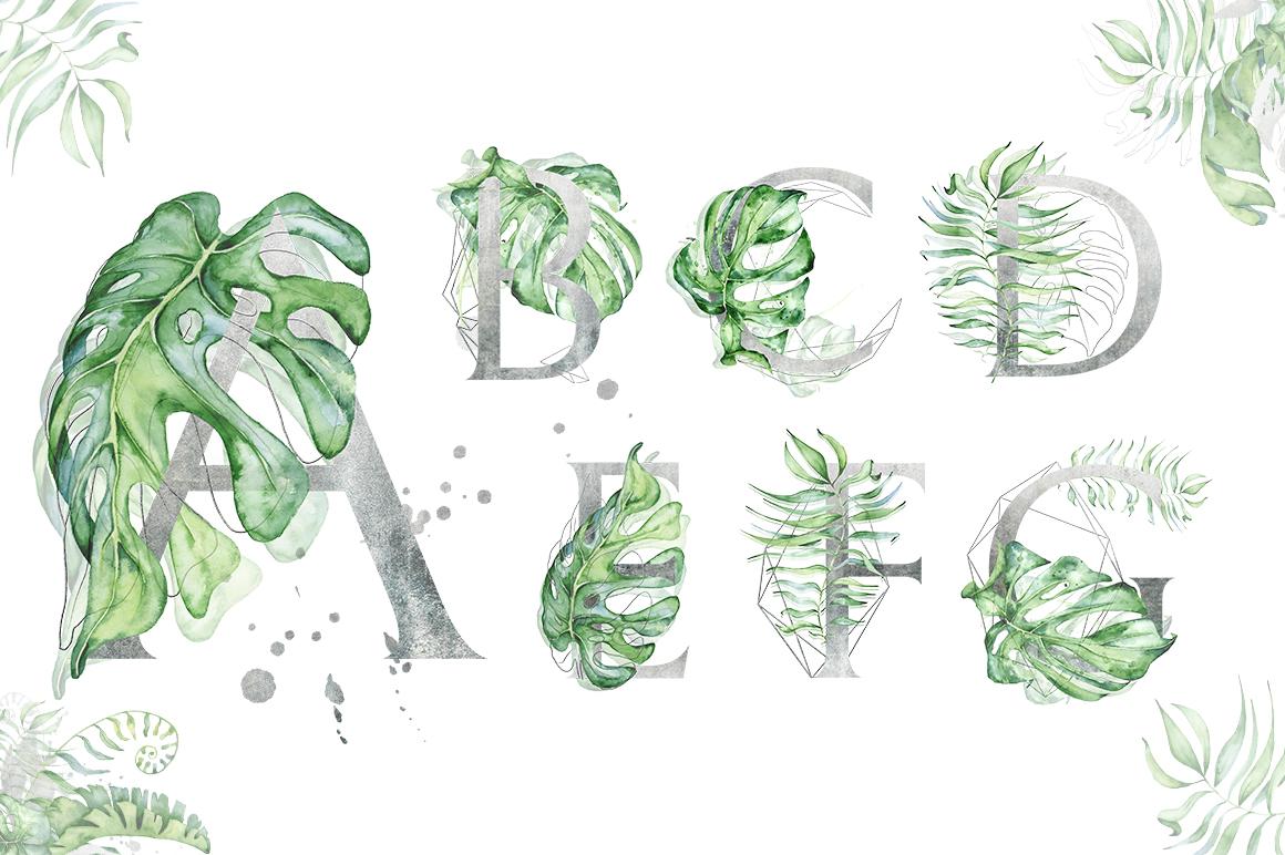 Silver Monstera - tropical alphabet example image 2