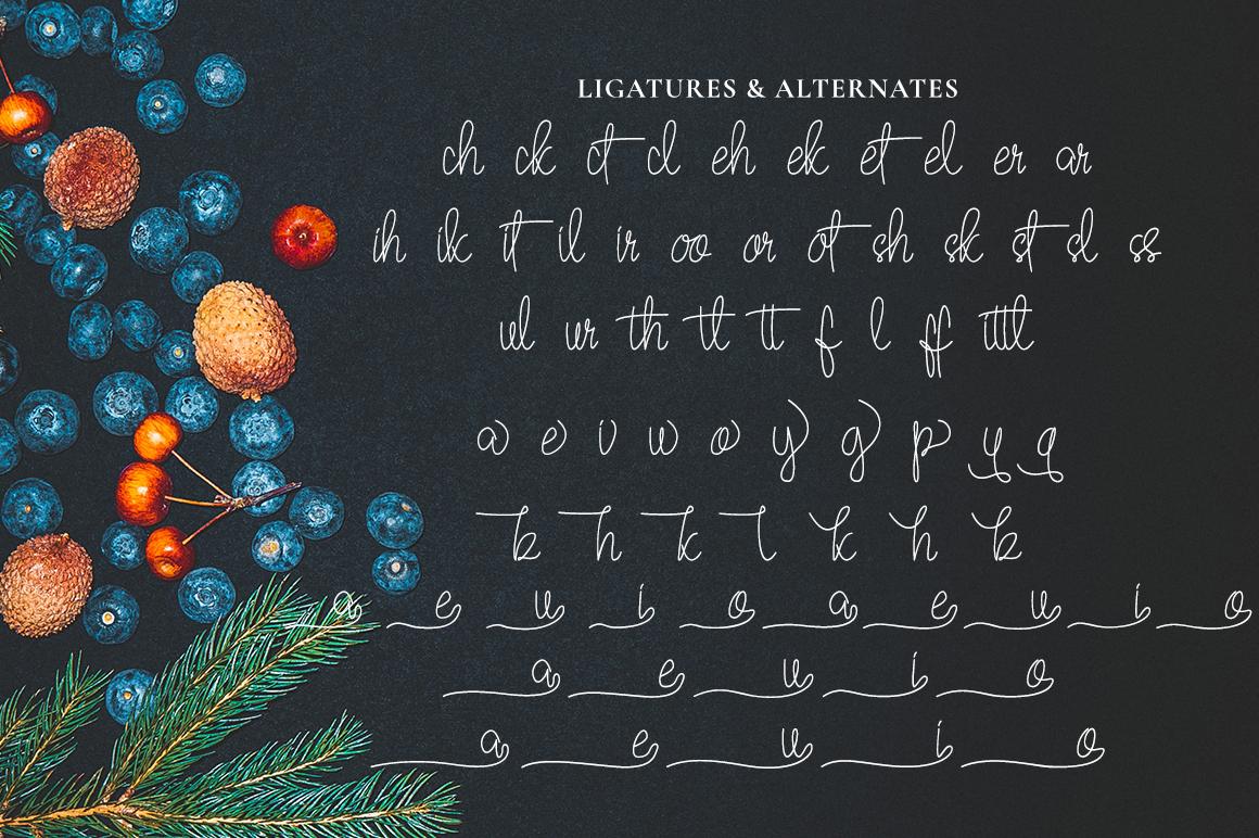 Quesky Handwritten Script example image 7