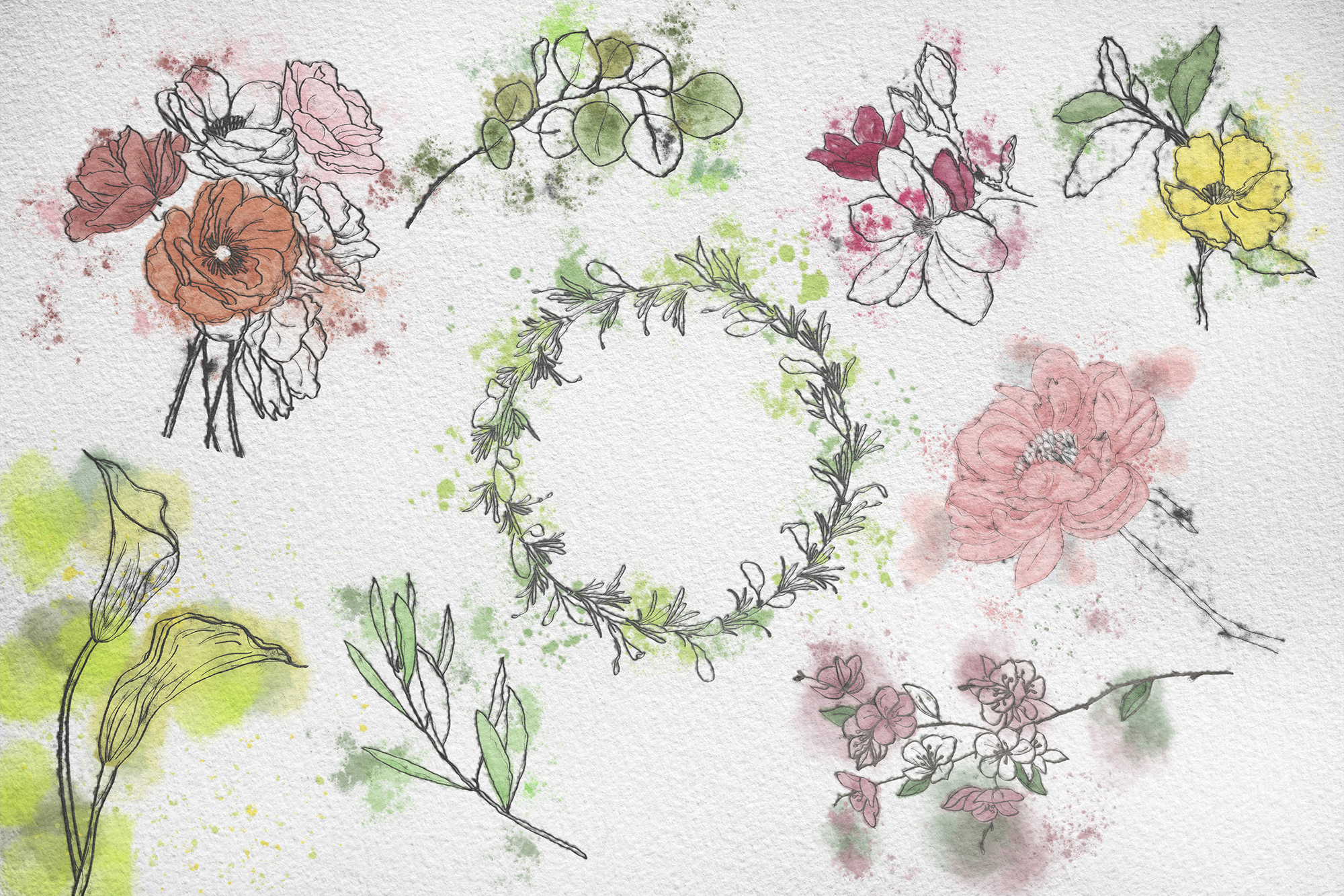 Set watercolor and ink flowers example image 6