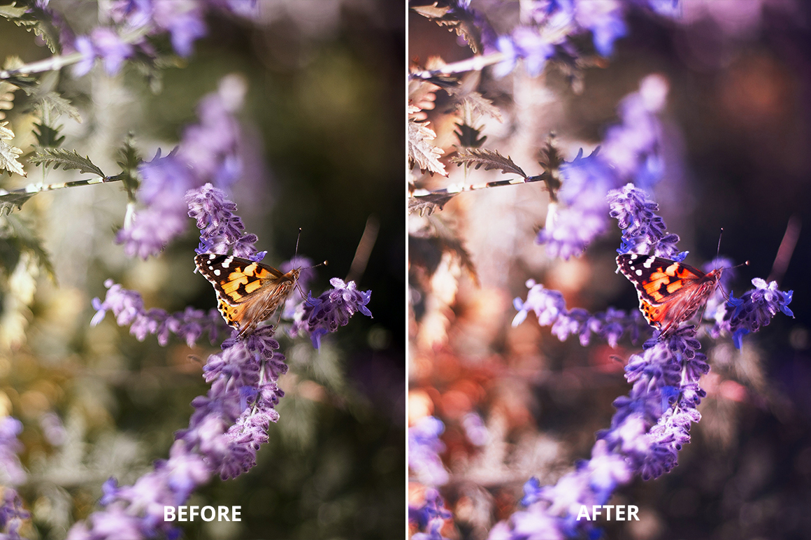 Hello October Photoshop Action example image 5