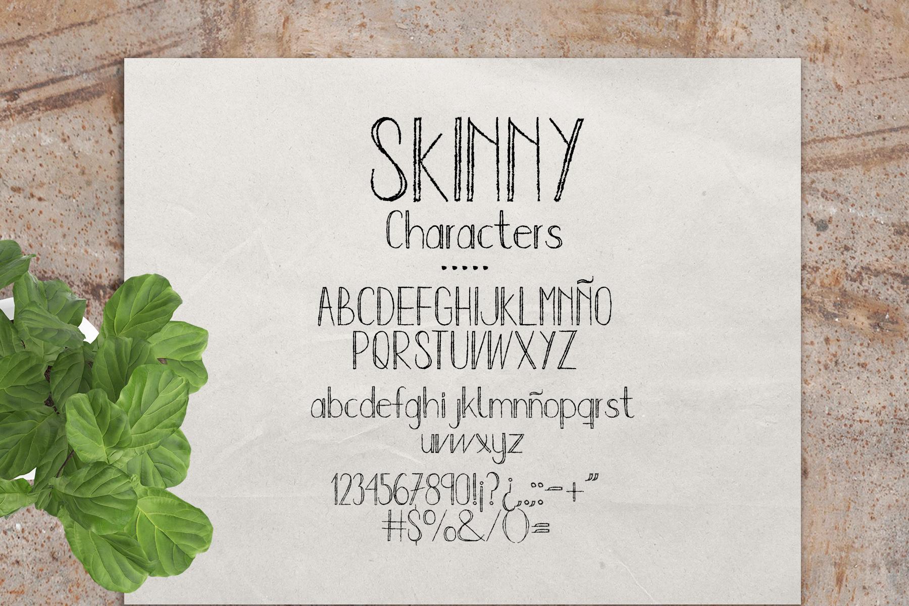 Sweet Kiwy: font trio example image 3