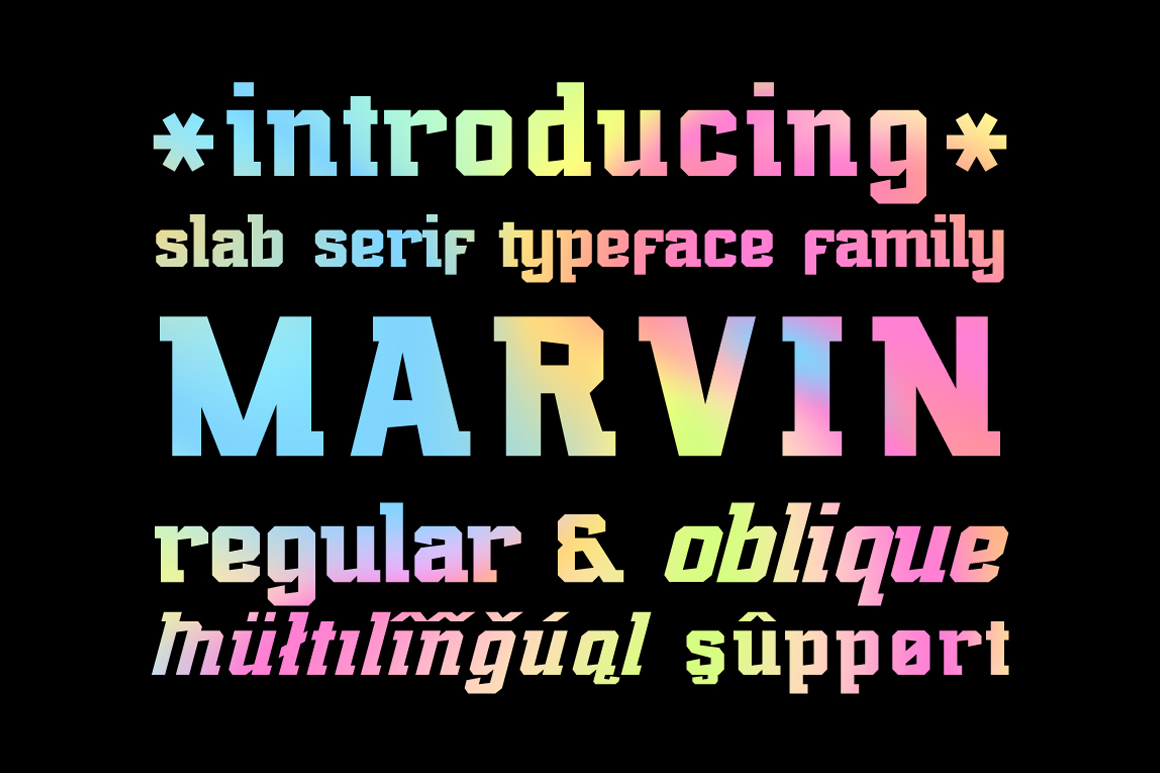 40 fonts bundle example image 11