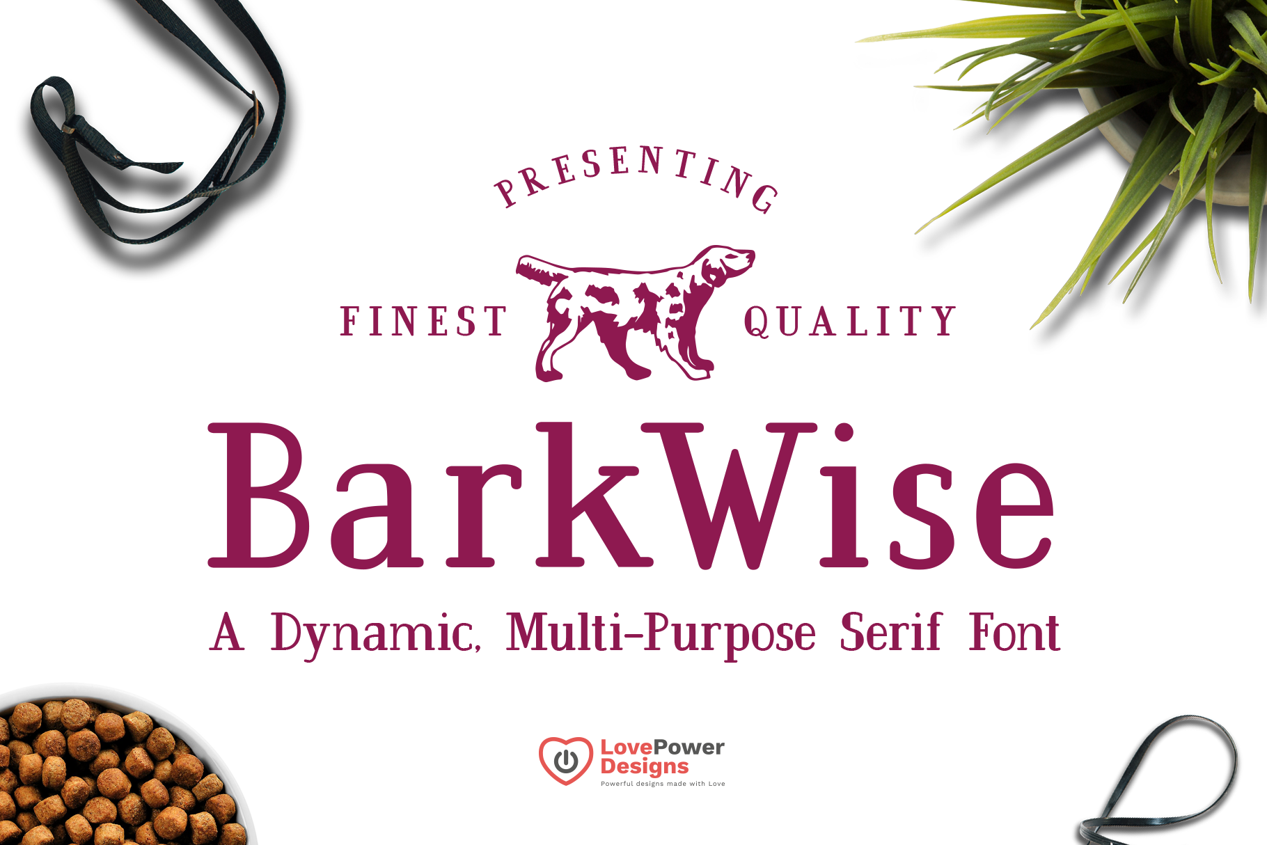 BarkWise - Multi-Purpose Serif Font example image 1