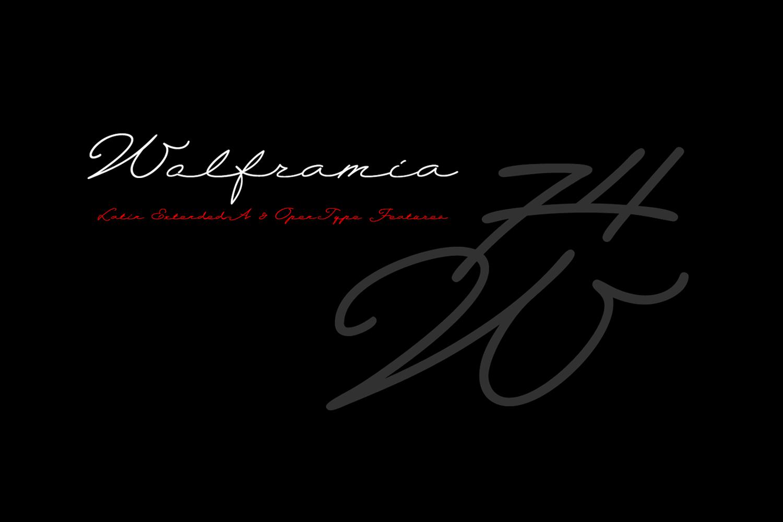 Wolframia example image 2