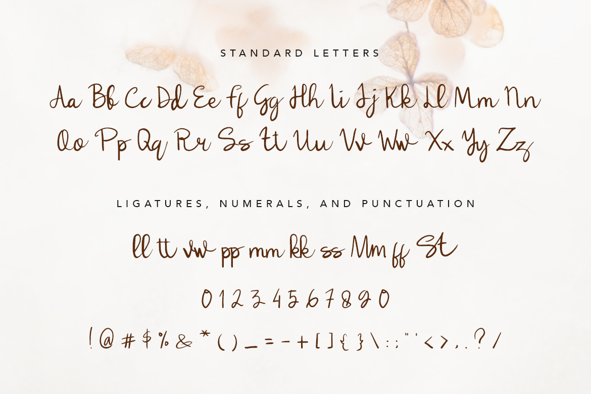 Lulla Font - A Lovely Script Font example image 9