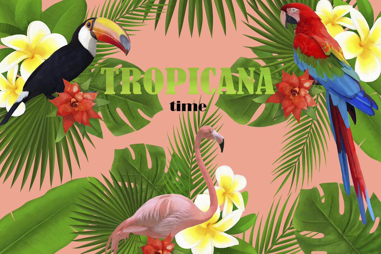 TROPICANA watercolor clipart set example image 1