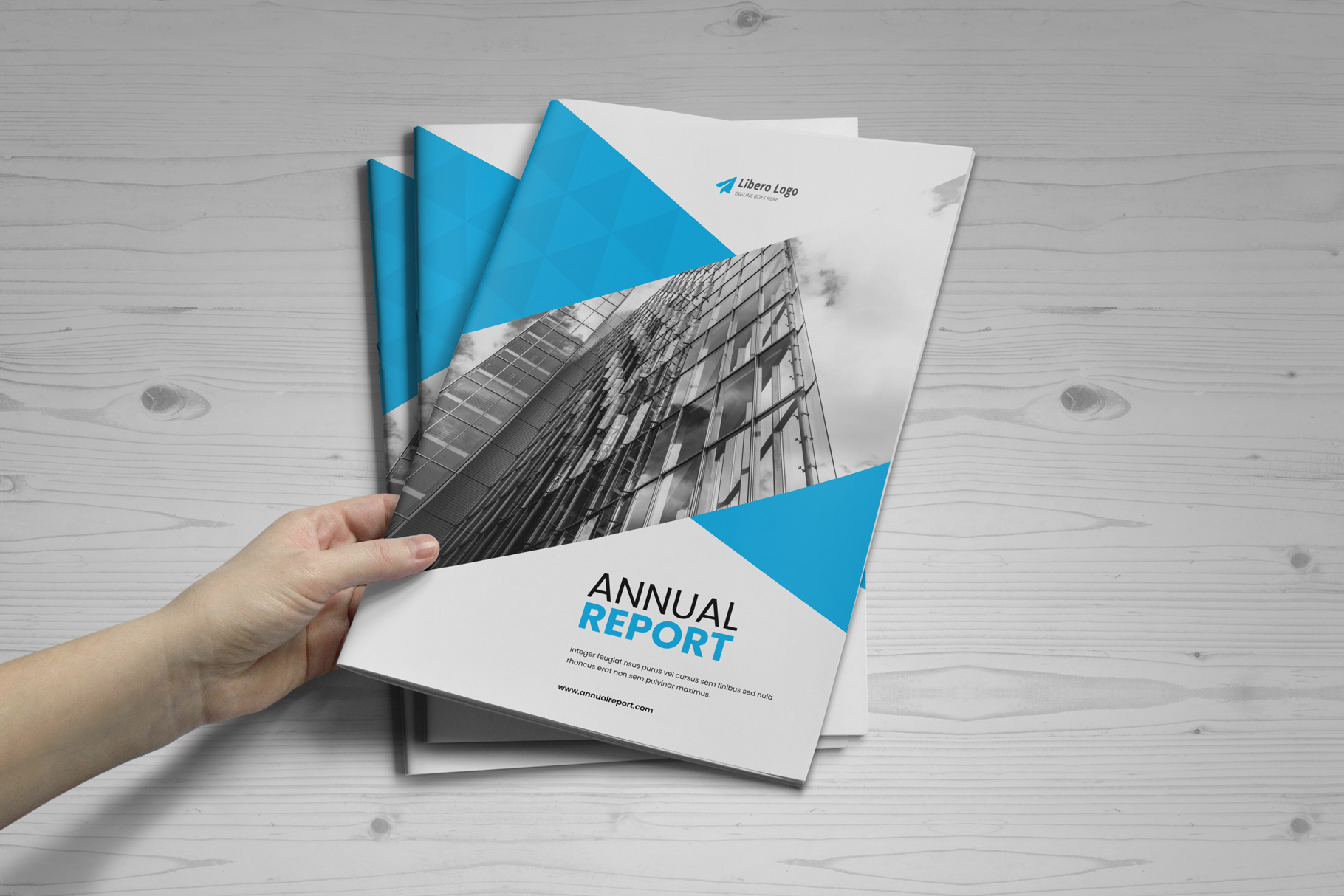Annual Report Design v6 example image 14