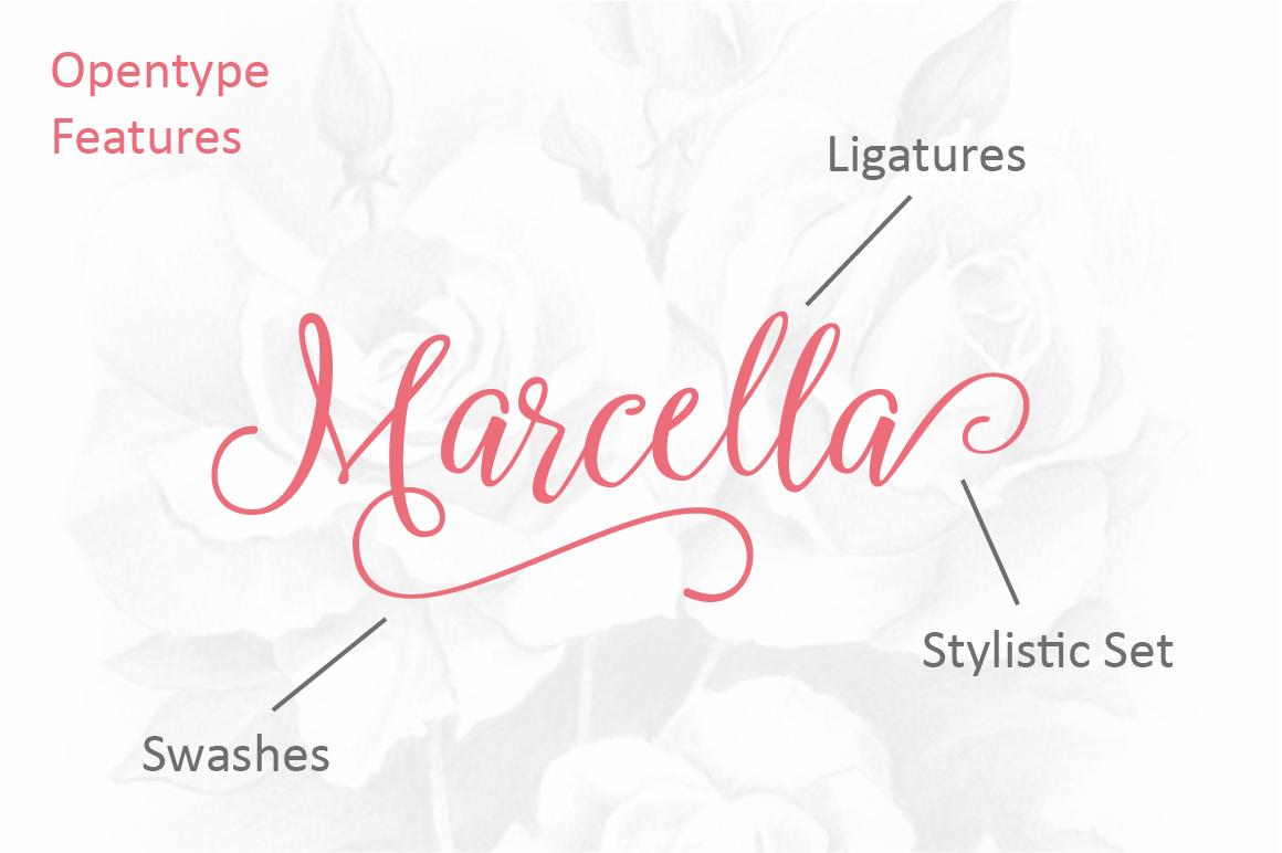 Marcella Script example image 3