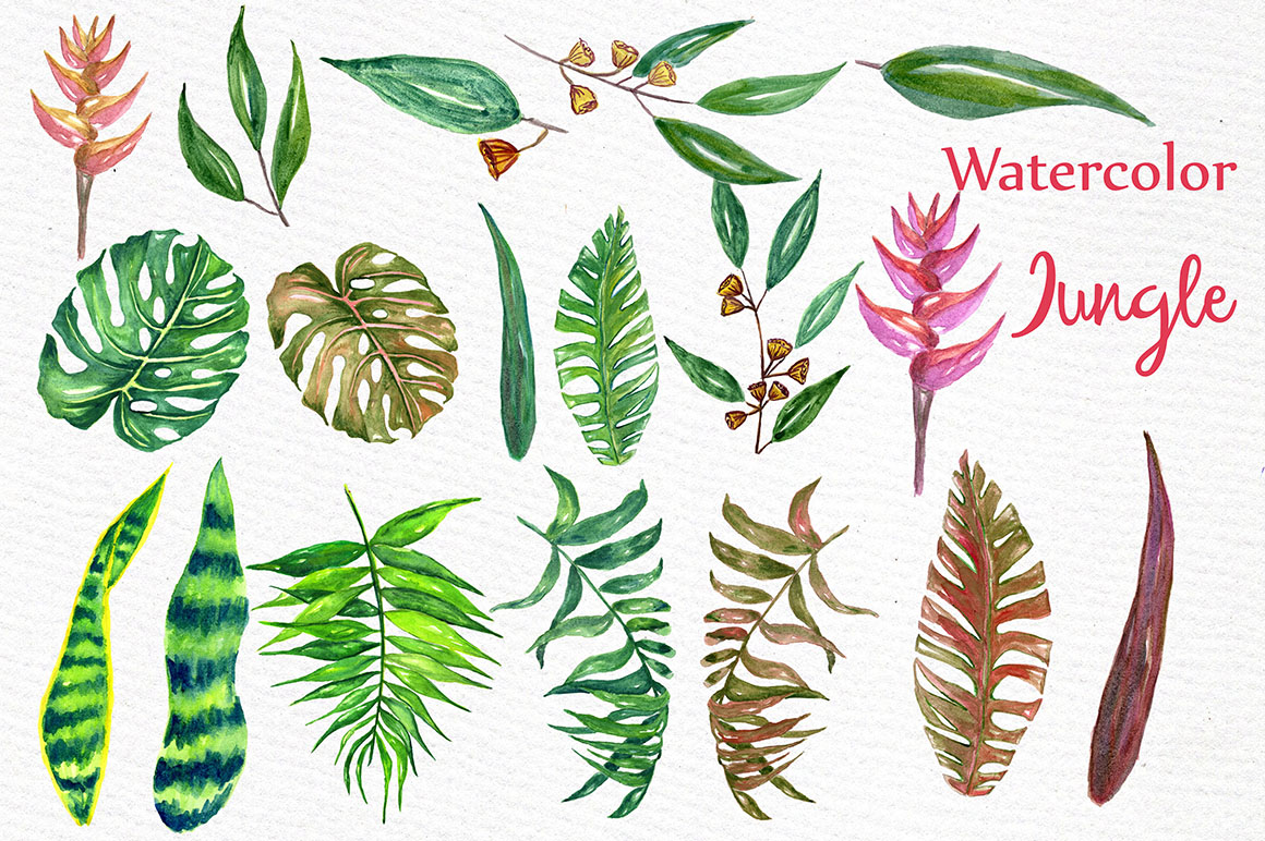 Watercolor Jungle clipart example image 2