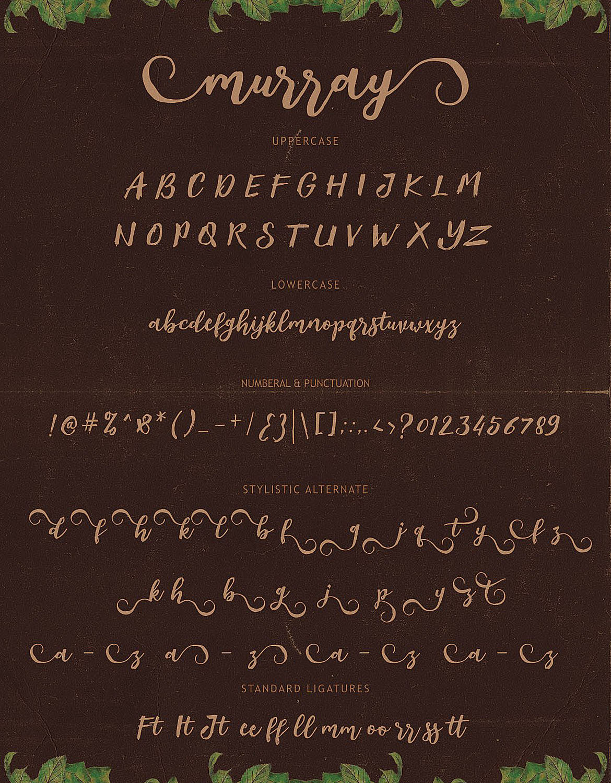 Murray Script Font Duo example image 7