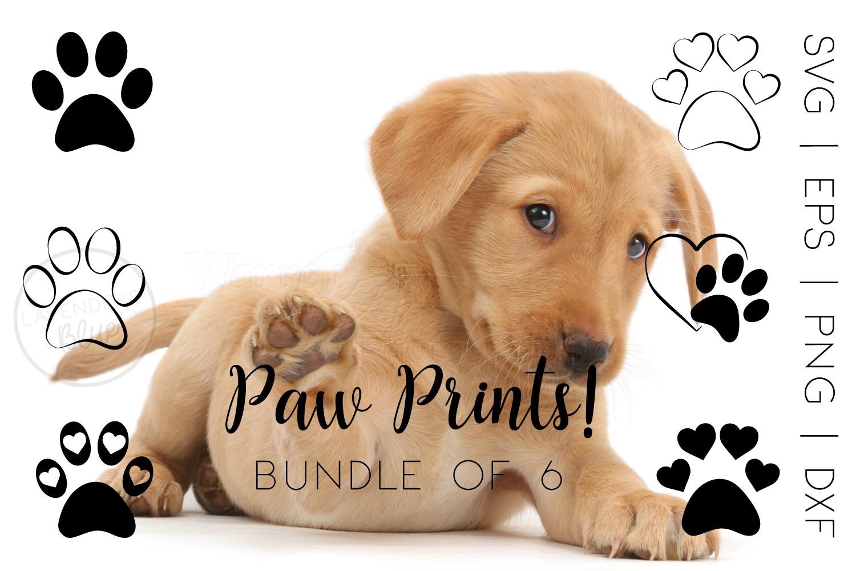 Paw Prints SVG Bundle example image 1
