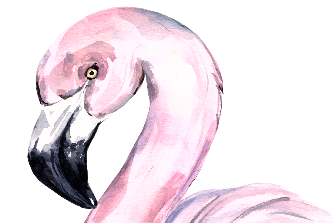 Watercolor Flamingo Print + Clip Art example image 2