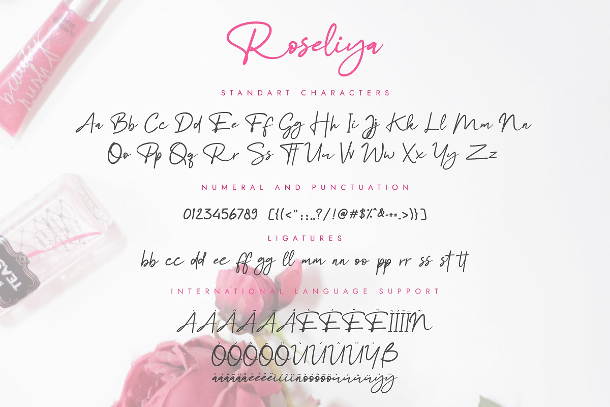 Roseliya Beautiful Script Font example image 9
