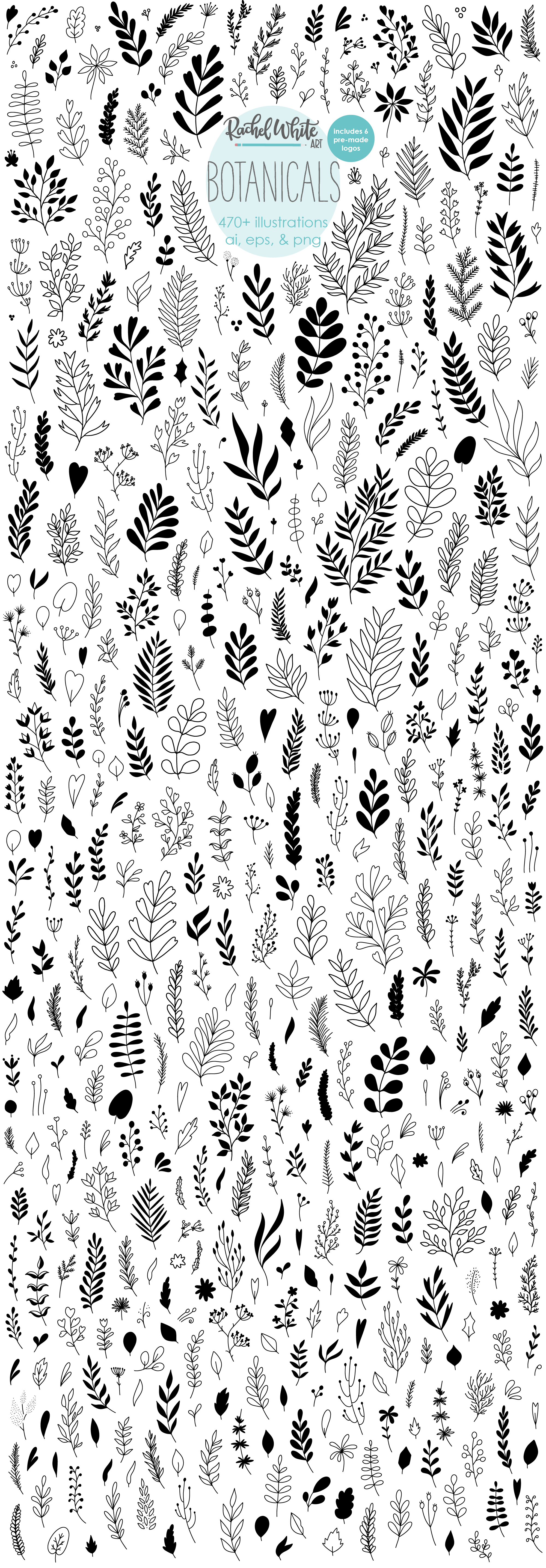 Botanicals, Vector Illustrations example image 1