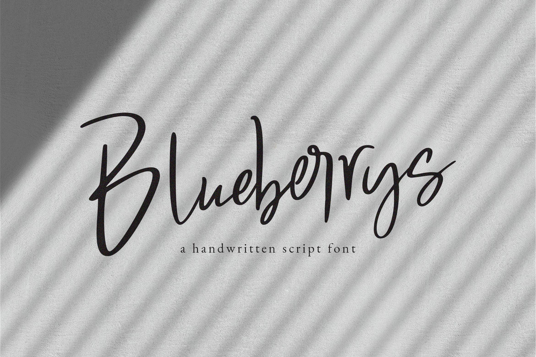 Blueberrys Signatures example image 1