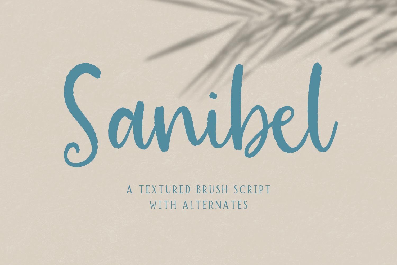 Sanibel Brush Font example image 1