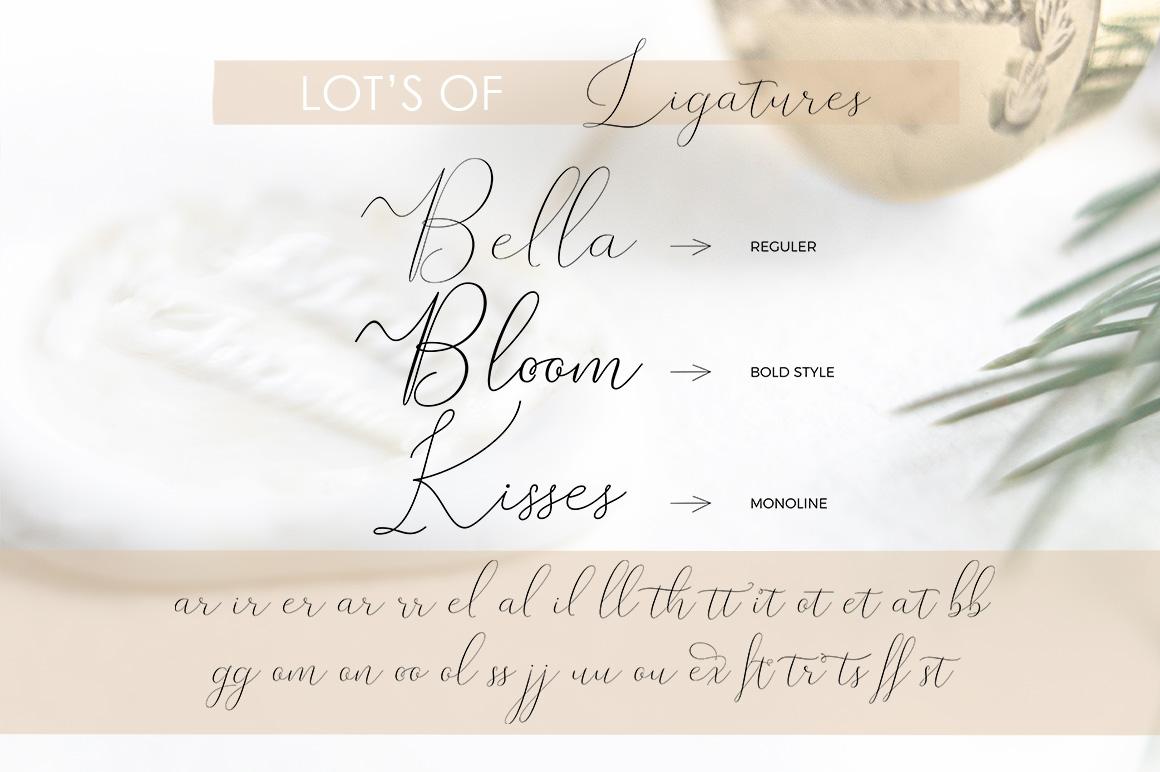 Rishella Signature Font example image 7